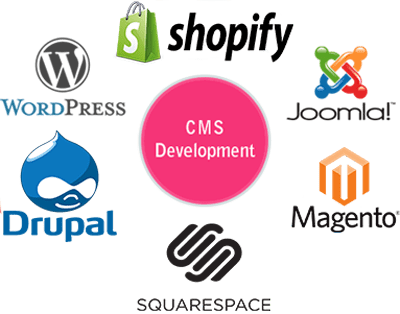 cms-web-development-image