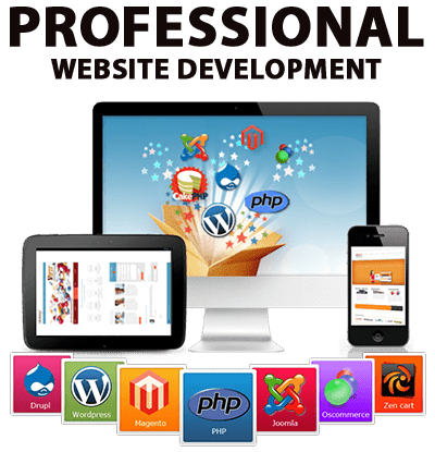 professional-website-development-image